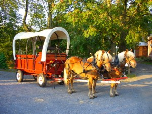Dayze Gone Bye Carriage Rides